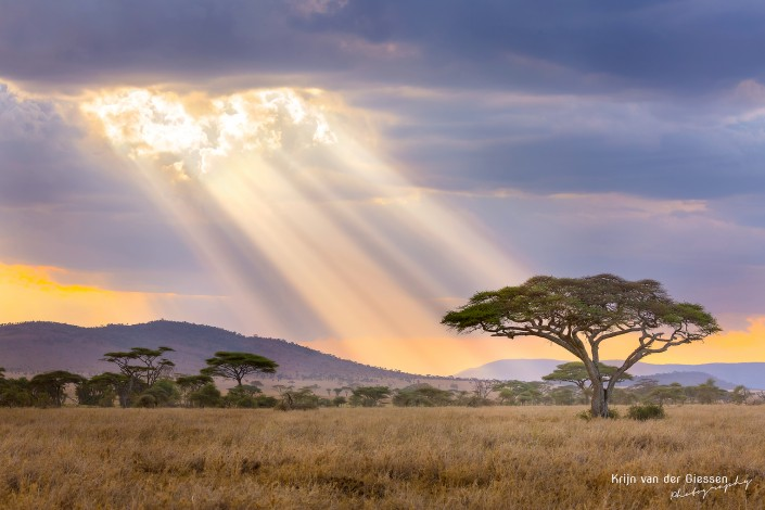 Lightrays break through the clouds in the Serengeti Tanzania