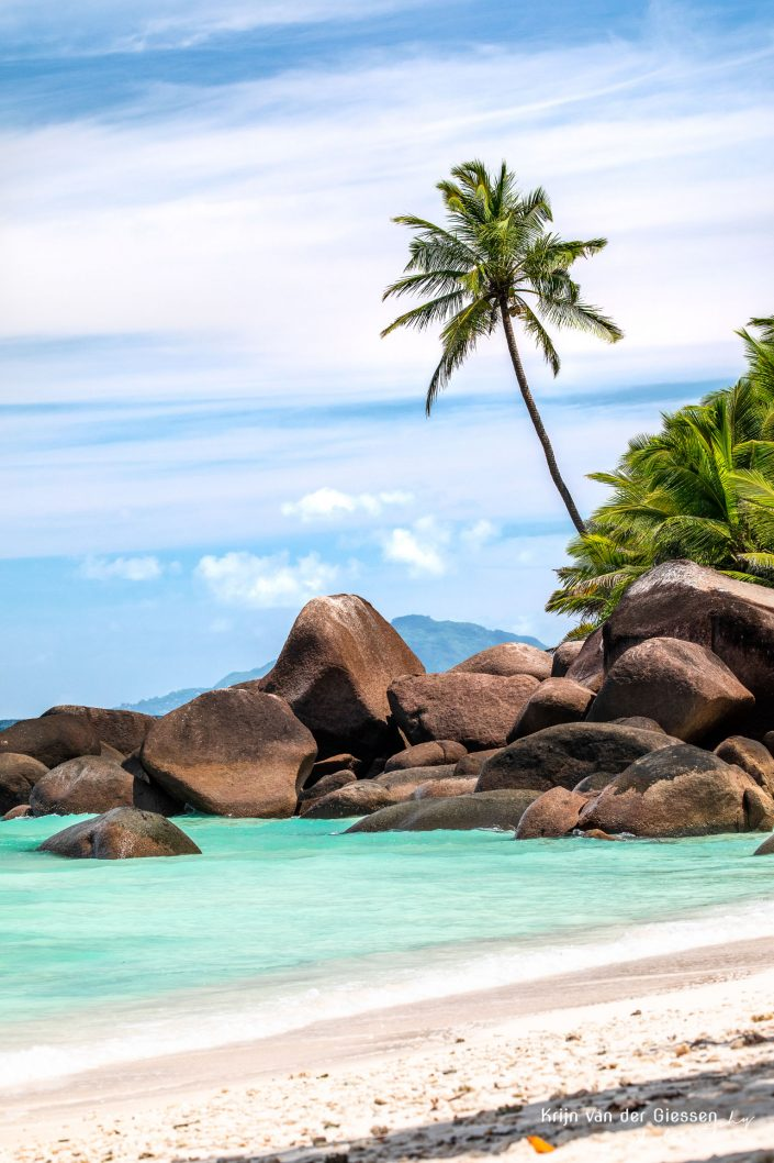 Lonely palm tree Seychelles copyright by Krijn van der Giessen Photography