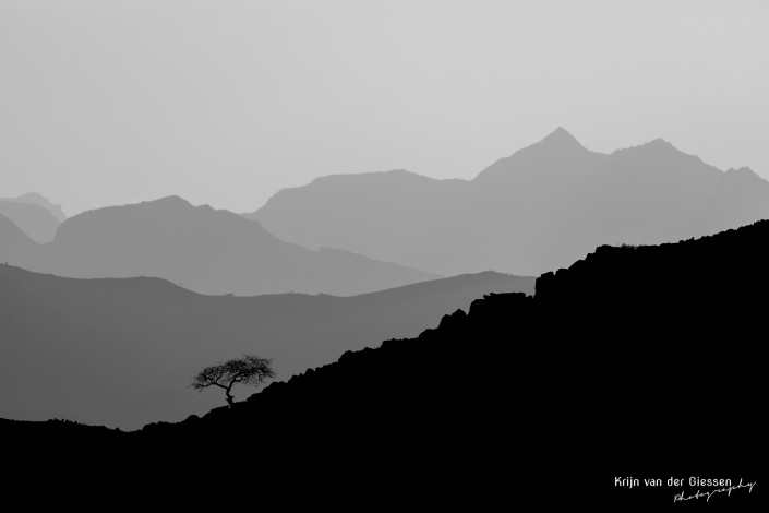 Oman Musamdam Tree Silhouette Mountain Layers copyright by Krijn van der Giessen Photography