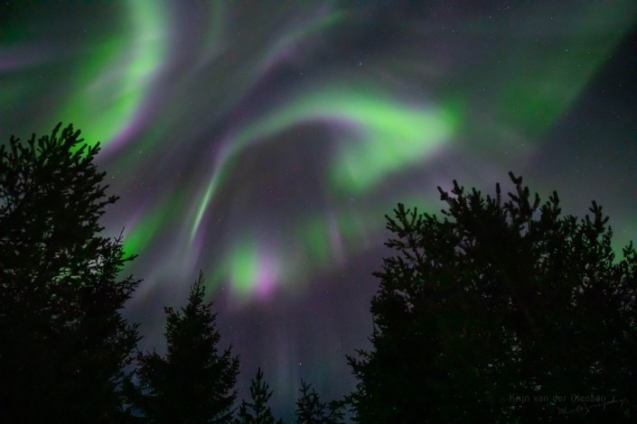 Curtains of Northern Lights Lapland Sweden Jokkmokk by Krijn van der Giessen