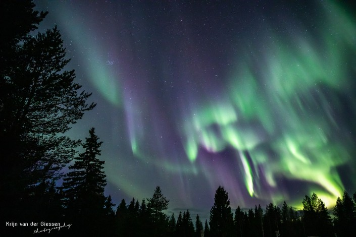 Northern Lights Lapland Sweden Jokkmokk by Krijn van der Giessen