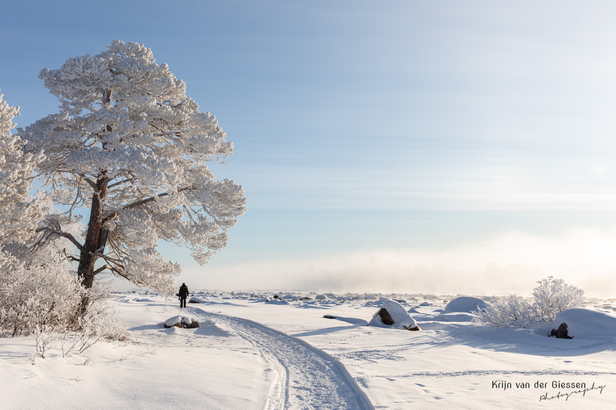Correctly exposed snow landscape