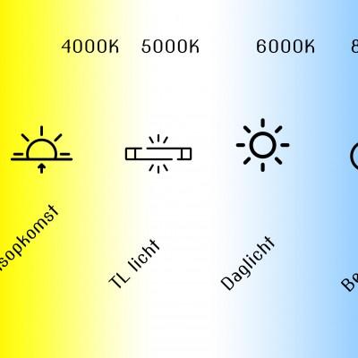 Witbalans: laat je kleuren stralen!