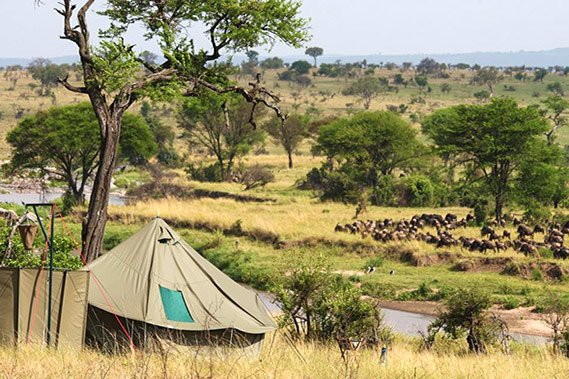 Green camp serengeti