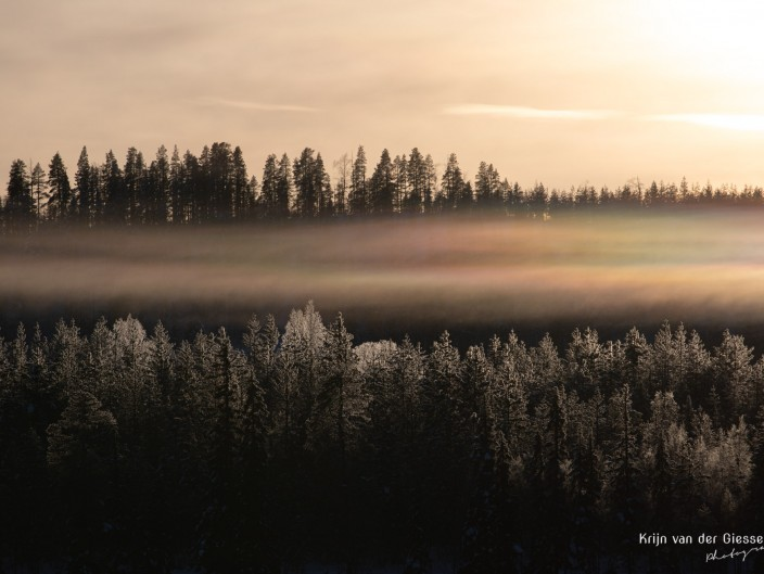 Sweden in Winter Landscapes & Wildlife