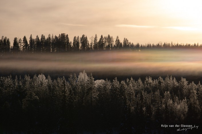 Rainbow clouds over snowy forrest in Sweden Lapland Copyright by Krijn van der Giessen Photography