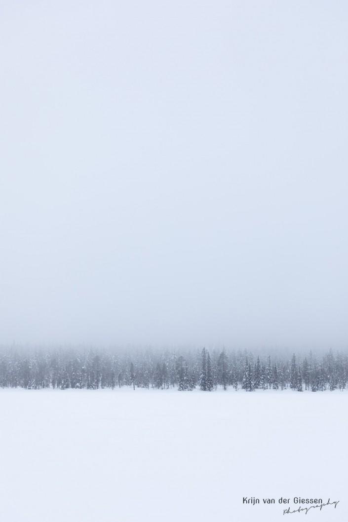 Forest in fog and snow in Sweden Lapland Copyright by Krijn van der Giessen Photography