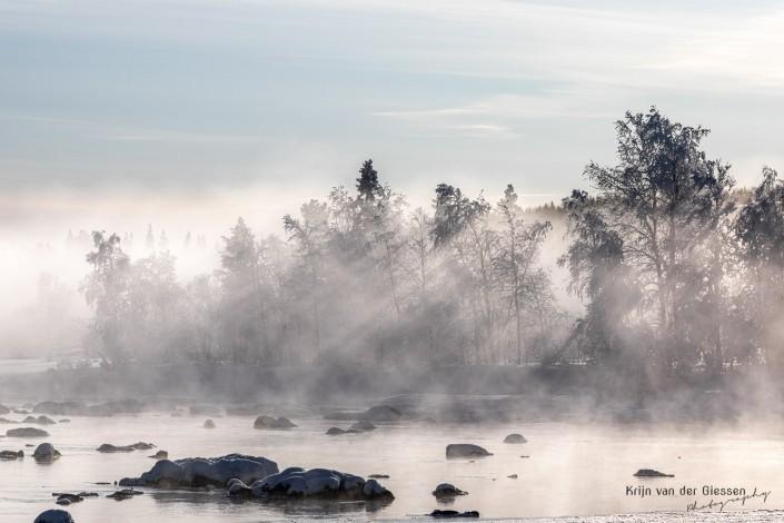 Lightrays through trees backlight in Sweden Lapland Copyright by Krijn van der Giessen Photography