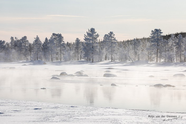 Scenic landscape covered in snow and fog in Sweden Lapland Copyright by Krijn van der Giessen Photography