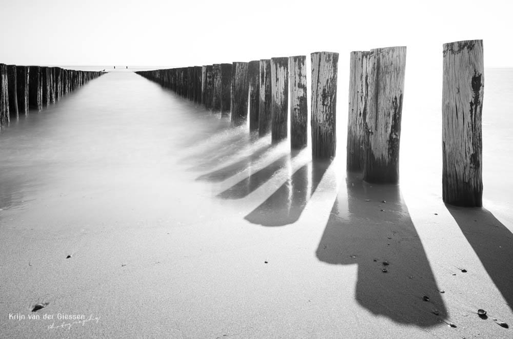 Palenrij op strand Dishoek Zeeland in zwart wot